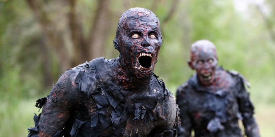 ¡Anuncian The Walking Dead: Michonne! #E32015